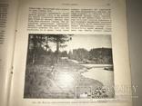 1914 Динозавры Геология  Издание Девриена, фото №7