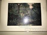 1914 Динозавры Геология  Издание Девриена, фото №10