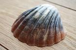 Мыло ручной работы -Морская раковина- с ароматом арбуза 74 г, фото №4
