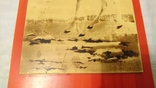 Панно на стену Олень 43*19 см, фото №6