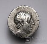 Каппадокійське царство, срібна драхма Аріобарзана I Філоромея, 96-63 до н.е., м.Євсебія photo 5