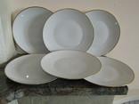 Большие тарелки d 25.0 см. очень тонкий фарфор клеймо Rosenthal Розенталь Германия