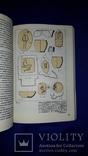 1986 Исследование археологии Северо-Западного Причерноморья - 1150 экз. photo 7
