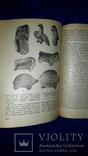 1982 Античные терракоты Северо-Западного Причерноморья - 1000 экз., фото №6