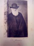 1910 г Памяти Дарвина, фото №6