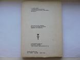 Аппликация самоделка из бархатных бумаг 1975г., фото №3