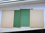 Аппликация самоделка из бархатных бумаг 1975г., фото №7