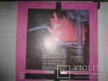 Black Sabbath- 6 LP, фото №12