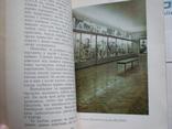 У царстві флори 1978р., фото №4