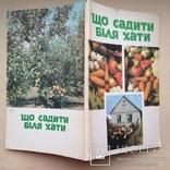 Що садити бiля хати. 1993  128 с. ил., фото №10