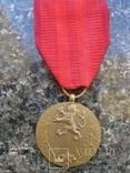 """Чехословакия  ,медаль  """"За  службу  власті"""", фото №2"""