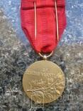 """Чехословакия  ,медаль  """"За  службу  власті"""", фото №4"""