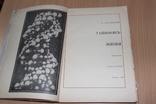 Тайнопись жизни .Азерников 1966 год  Все о ДНК, фото №3
