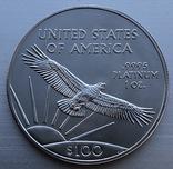 100 $ 2019 год США платина 31,1 грамм 999,5' photo 2