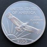 100 $ 2019 год США платина 31,1 грамм 999,5' photo 4