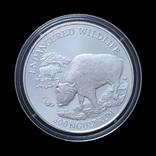 300 Нгултрум 1991 Вымирающие виды (Серебро 0.925, 28.28г), Бутан