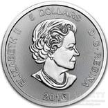 Канада 5 долларов 2016 год. Серебро. Тираж 100 экземпляров, фото №3