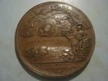 Медаль. Пётр - 1. Взятие крепости Ниеншанс датирована 1703 г. photo 7