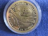 200 евро ,футбол,Испания 2008 г. , 13.5 гр. золото 999 проба.