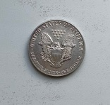 Доллар серебро 999 (коллекционная)