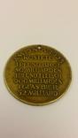 Памятная медаль, Мучения немецкого народа, Веймарская республика, Германия 1923 год. photo 2