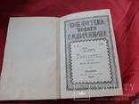 Месть Роксоланы. Роман Полянского Львов. 1897 г., фото №3