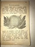 Українські Зимові Вечори 1880 року photo 6