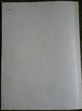 Скифские древности Поднепровья (Эрмитажная коллекция Бранденбурга), 1977, фото №7