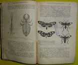 1898 Учебник зоологии. Рихард Гертвиг. Одесса