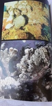 Мир коралов, фото №7