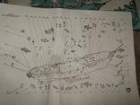 """Учебно-парусное судно - барк """"Товарищ"""", фото №8"""