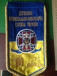 Вымпел МВД 10 лет тюремному департаменту, фото №3