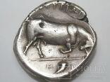 Двойной статер Лукания (350-300 г. до н.э.) photo 2