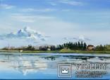 Озеро. Летний день photo 1