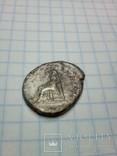 Веспасиан photo 3