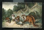 К. Чербуэ Завтрак лисиц охота до 1917 г