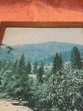 """Репродукція"""" Вид на гори"""" photo 4"""