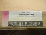 """Репродукция """"Возвращение стада"""" Ф. Васильев, фото №9"""