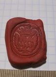 Перстень-печать щитковосрединный, фото №9