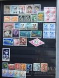 Альбом с марками Царской России, УНР,Германии и многих стран старого периода photo 12