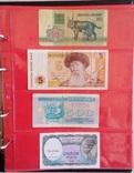 Акция: Альбом для монет/банкнот Колекшн Люкс 269 ячеек, фото №8