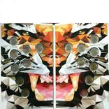Альбом для монет КРАСНОЙ КНИГИ 91-94Г. капсульного типа, фото №5