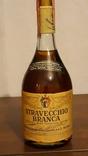 Stravecchio Branca 1979 pik 42 gr Riserva Speciale distillato photo 1