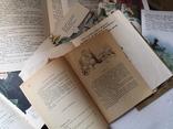 Детская литература детские сказки книги СССР, фото №12