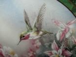 Настенная декоративная тарелка фарфор Колибри Lena Liu's photo 5