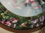 Настенная декоративная тарелка фарфор Колибри Lena Liu's photo 7