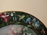 Настенная декоративная тарелка фарфор Колибри Lena Liu's photo 9