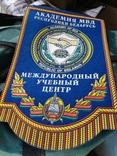Вымпел академия мвд Республика Беларусь милиция, фото №4