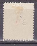 Царская Россия земство Псков 1891(*), фото №3