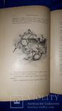 1900 Дюма - Граф Монте-Кристо 28.5х19 см. photo 4